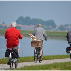 active-bikes-cyclist-264073 (1)